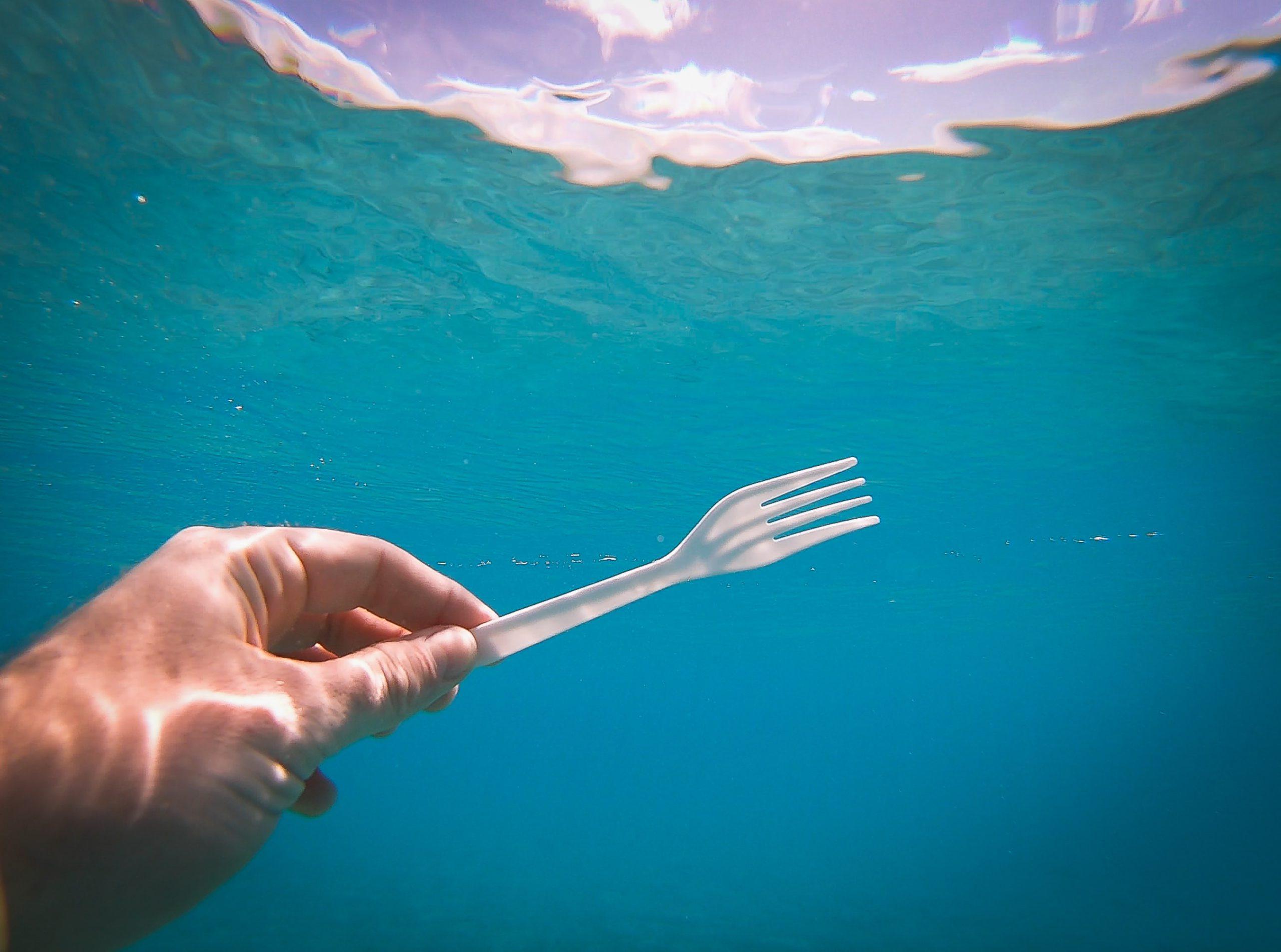 Imports of single-use plastics